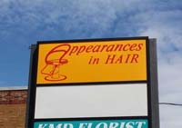 Appearances in Hair